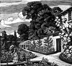 wood-engraving print: The Garden for The Runaway